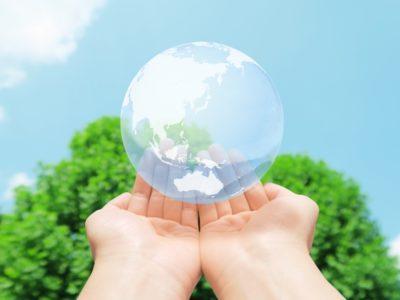 環境に配慮したブラシ素材の提供が可能になりました